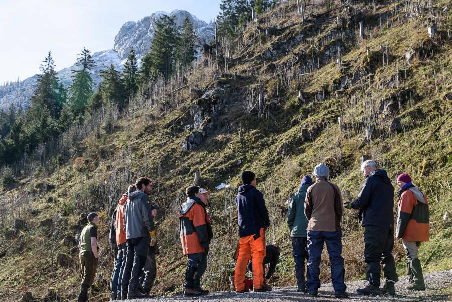 Bergwaldprojekt Schliersee - Aufforstung