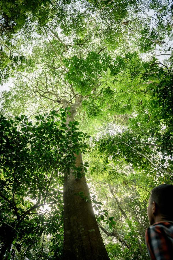Project TOGO - Klimaschutz mit sozialen Verbesserungen