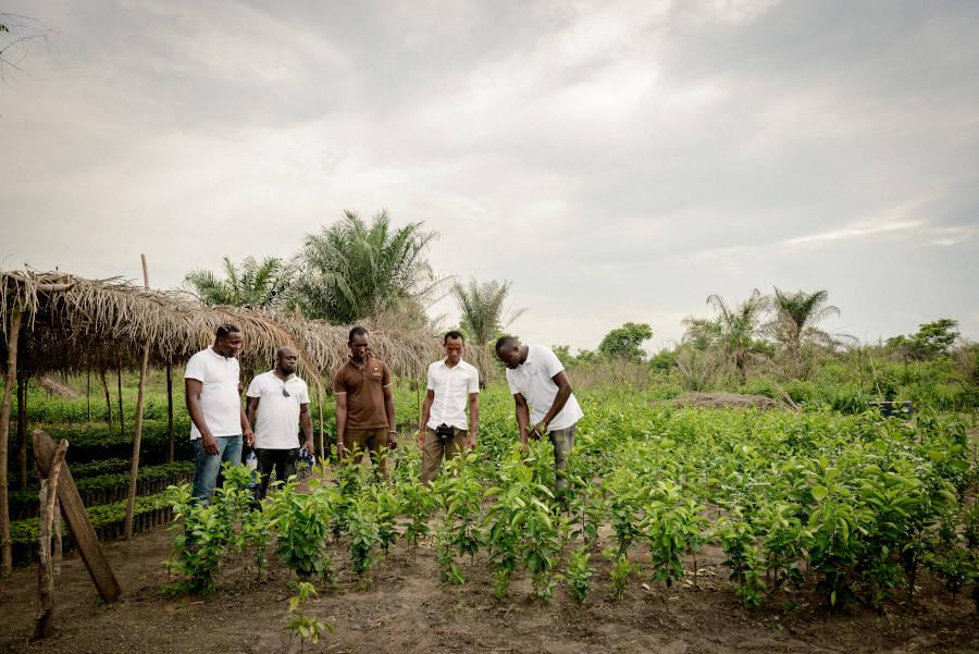 marmondo Marmelade unterstützt Klimaschutz Project Togo